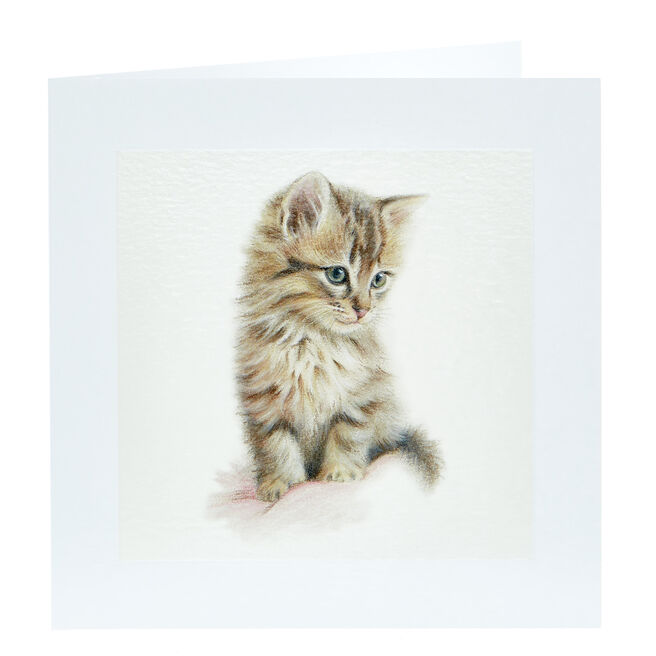 Any Occasion Card - Cute Kitten, Blank