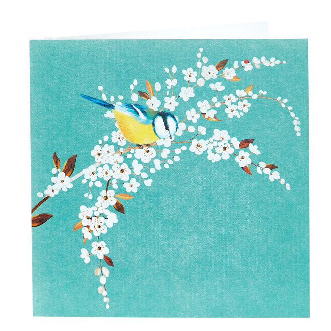 Any Occasion Card - Blue Tit In A Tree