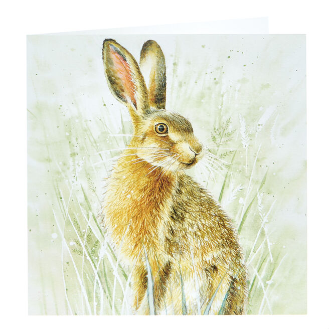 Any Occasion Card - Wild Hare
