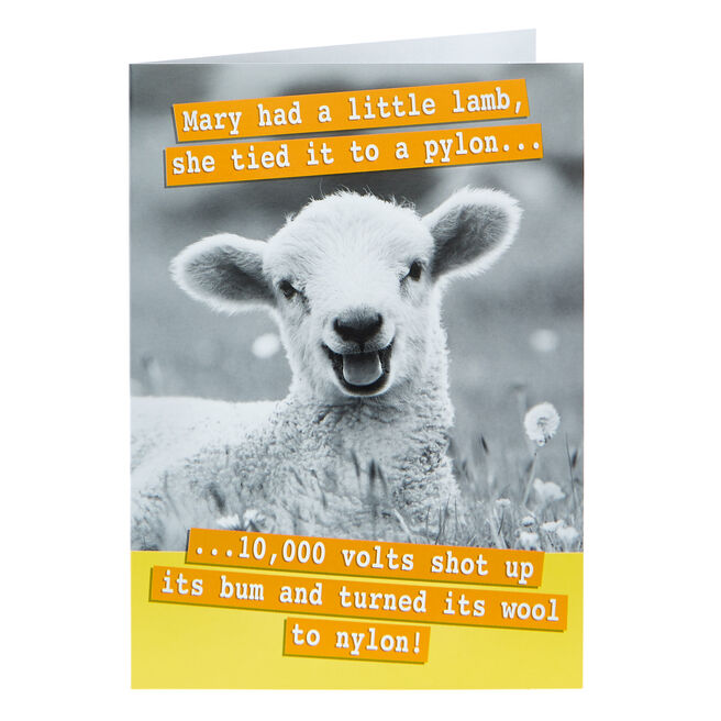 Any Occasion Card - Mary Had A Little Lamb
