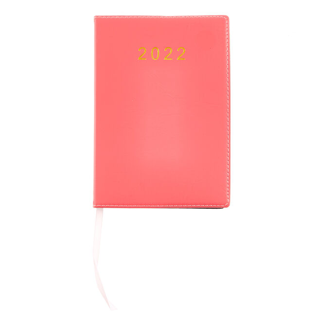 Pink Page-A-Day 2022 Pocket Diary