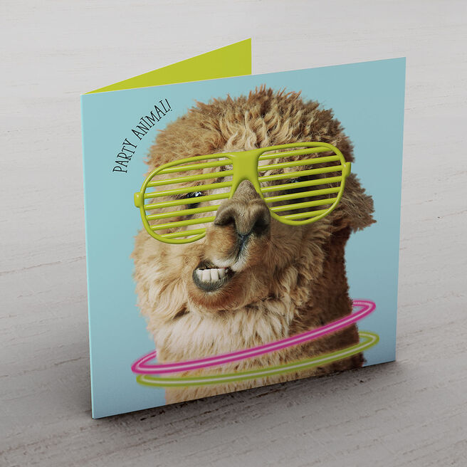 Personalised Card - Party Llama