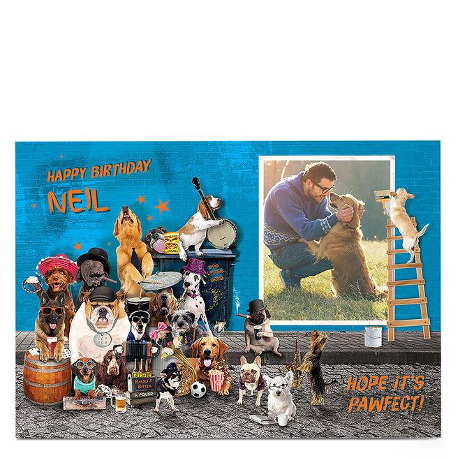 Photo Birthday Card - Animal Band