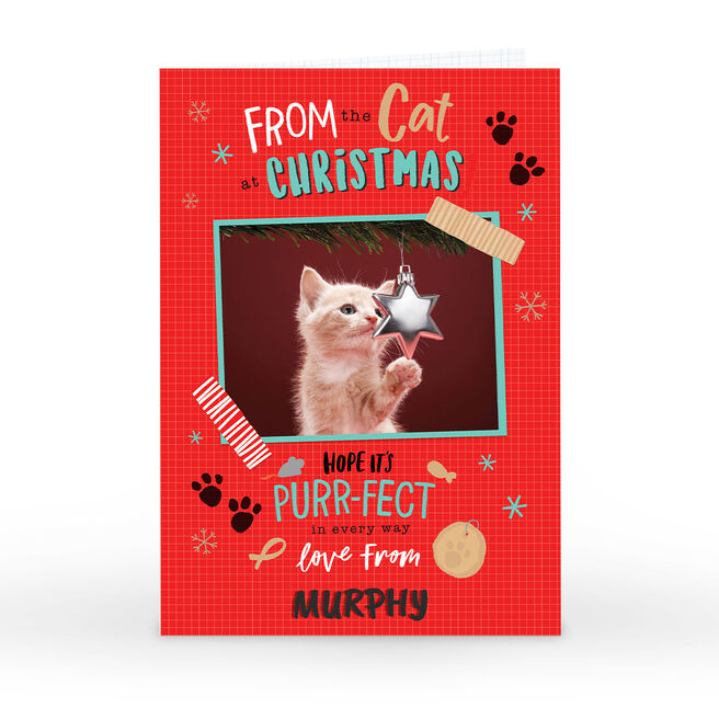 Photo Christmas Card - From The Cat