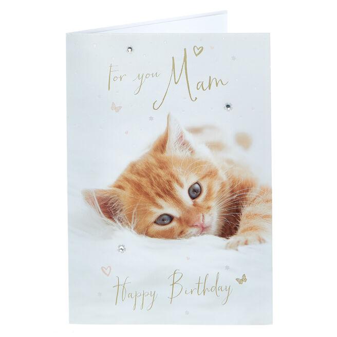 Birthday Card - For You Mam, Kitten