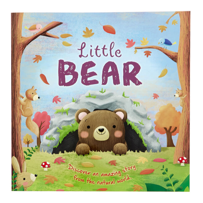 Little Bear Storybook