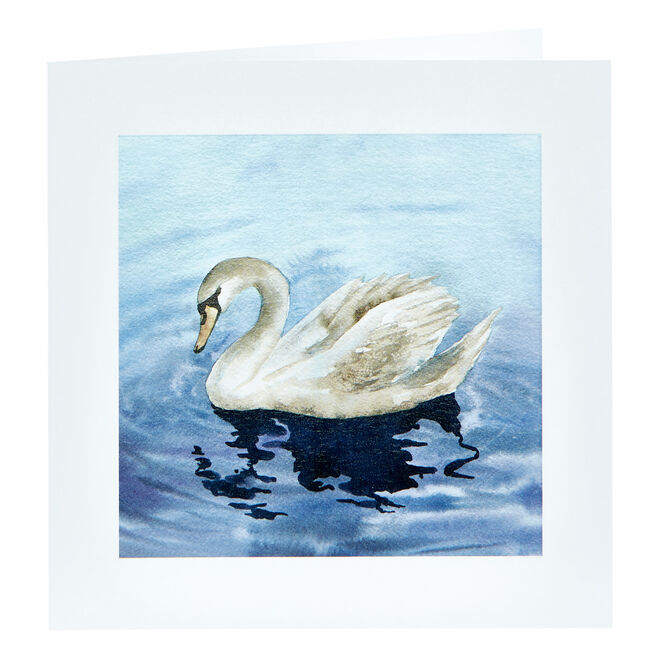 Any Occasion Card - Painted Swan