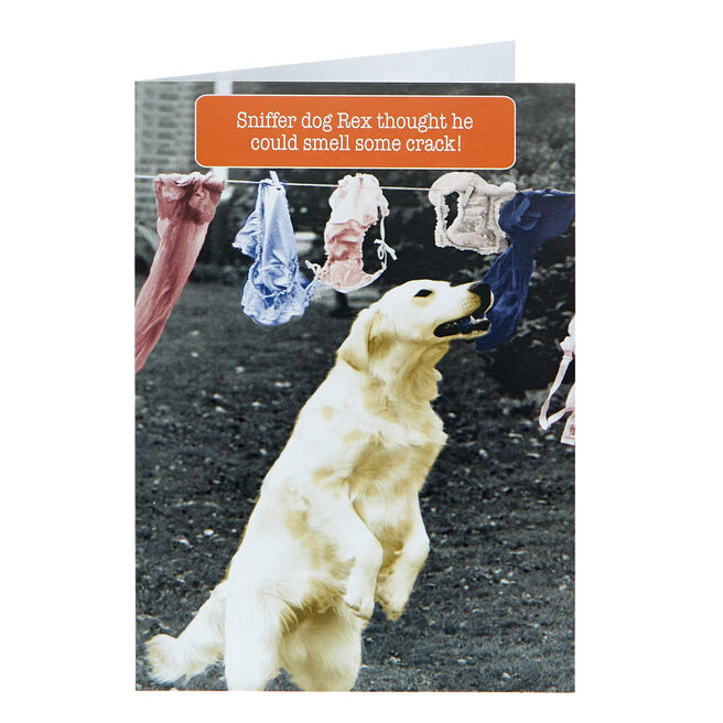 Any Occasion Card - Sniffer Dog Rex