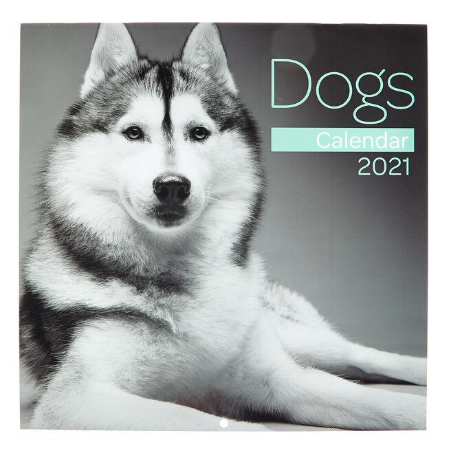 Dogs 2021 Calendar