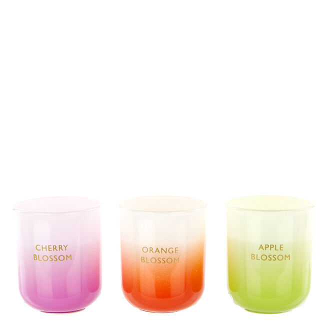 Blossom Scented Candles - Set Of 3