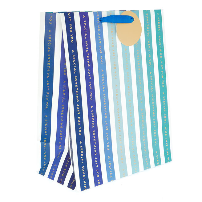 Medium Portrait Gift Bag - Special Something Blue