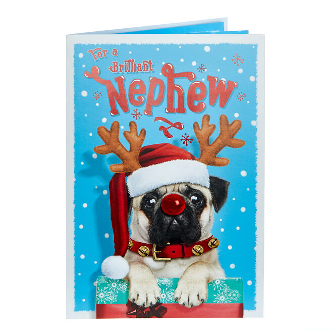 Christmas Card - Brilliant Nephew Pug