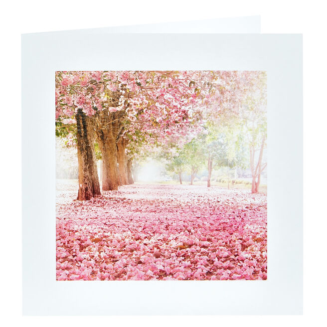 Any Occasion Card - Pink Blossom