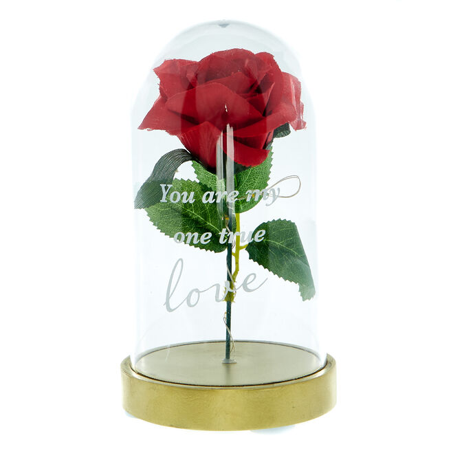Light-up Artificial Rose in Dome