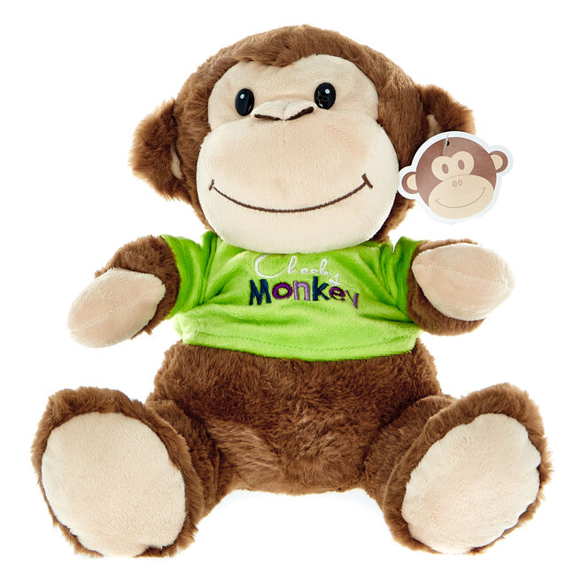 Cheeky Monkey Soft Toy