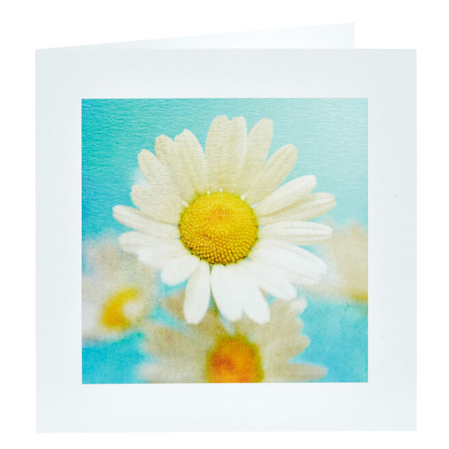 Any Occasion Card - Daisy