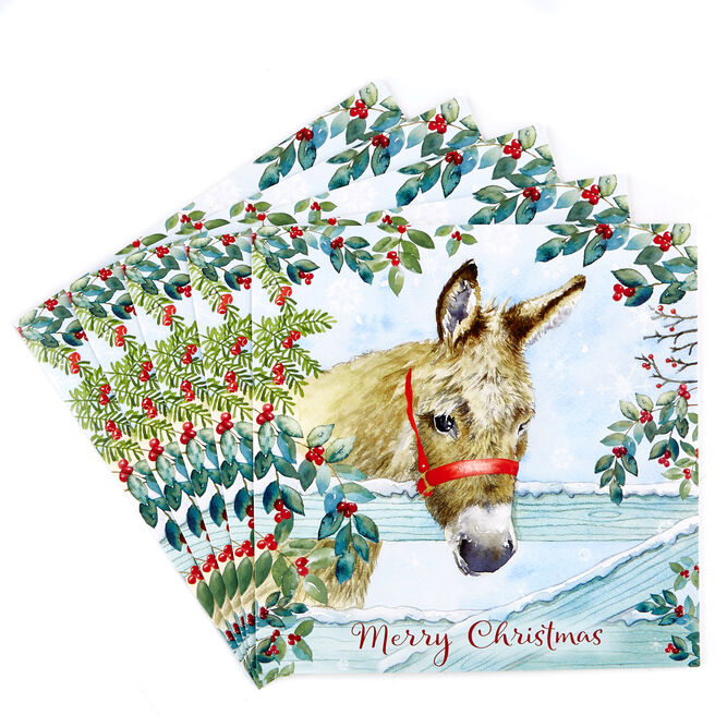 Charity Christmas Cards - Donkey (Pack Of 7)