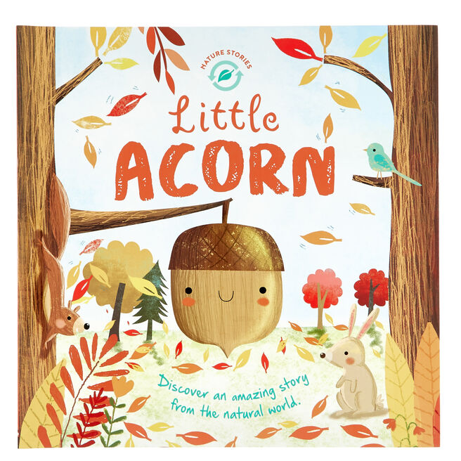 Nature Stories: Little Acorn Storybook