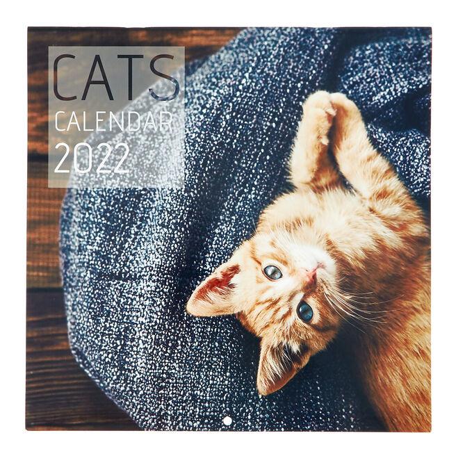 Square 2022 Cat Calendar