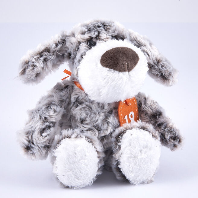 18th Birthday - Grey & White Dog In Gift Bag