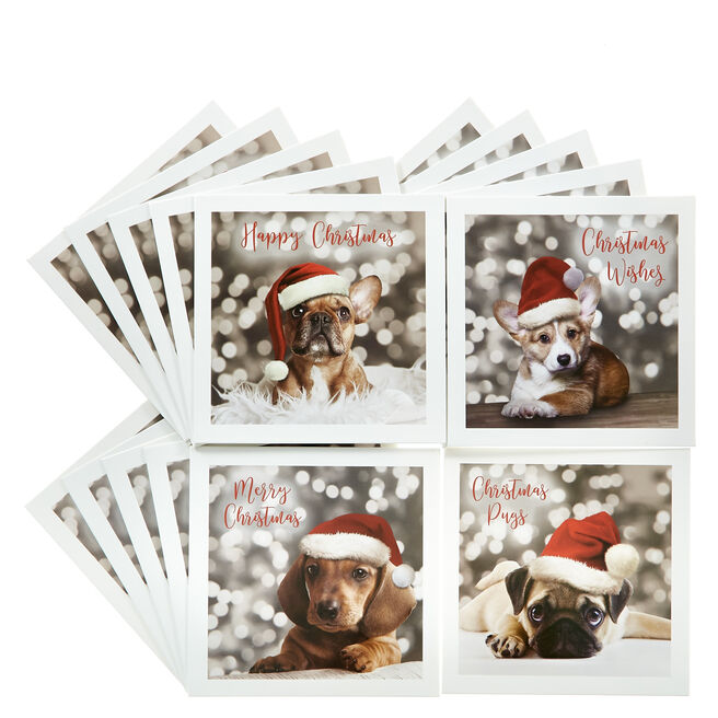 20 Dog-Themed Charity Christmas Cards - 4 Designs