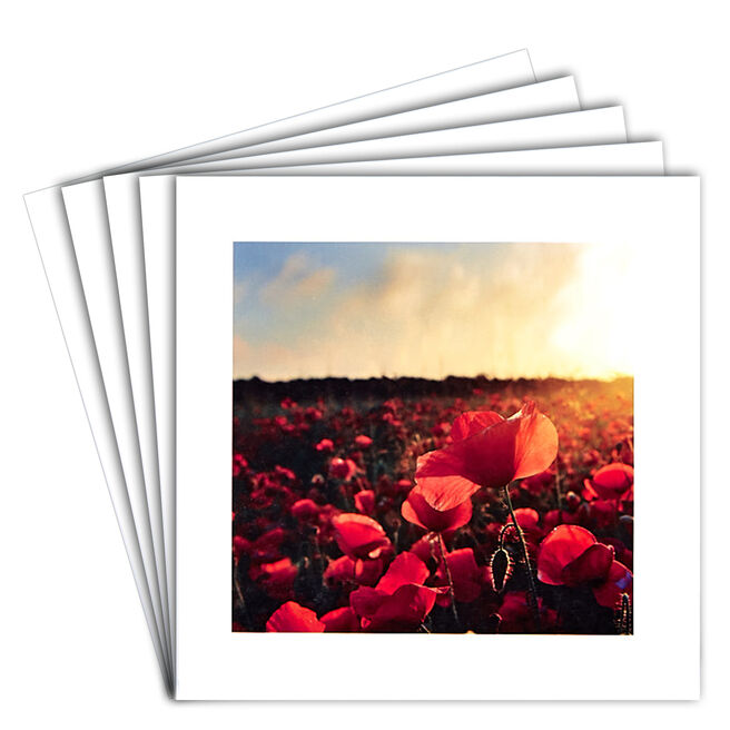 12 Blank Cards - Poppy Field
