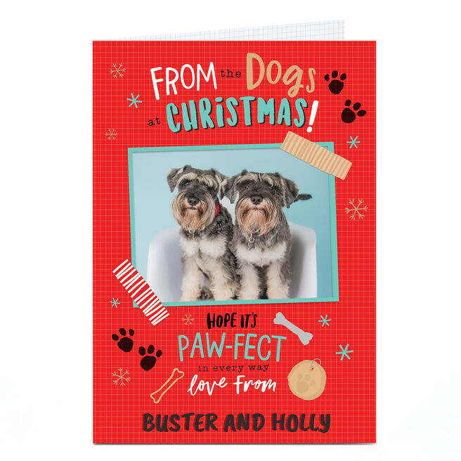 Photo Christmas Card - From The Dogs