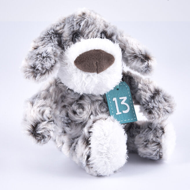 13th Birthday - Grey & White Dog In Gift Bag
