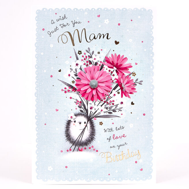 Signature Collection Birthday Card - Mam Hedgehog