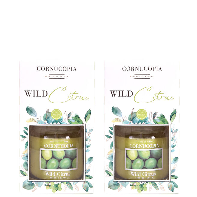Boxed Cornucopia Scented Candle - Wild Citrus (Set of 2)