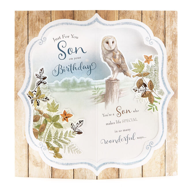 Exquisite Collection 3D Birthday Card - Son, Owl