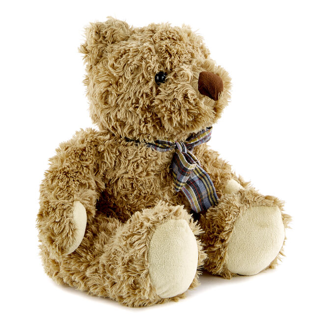 Traditional Brown Bear Soft Toy