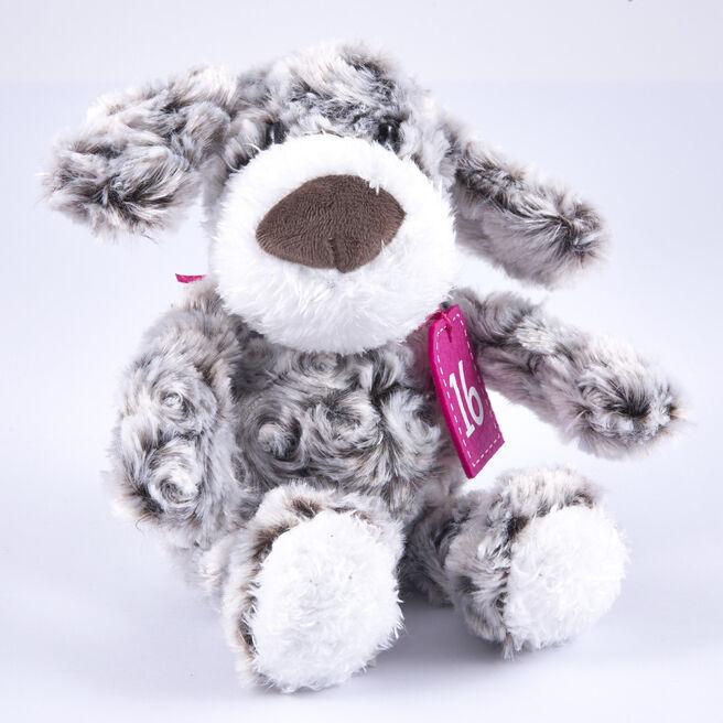 16th Birthday - Grey & White Dog In Gift Bag