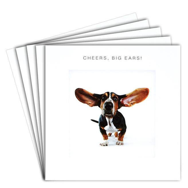 12 Blank Thank You Cards - Cheers Big Ears