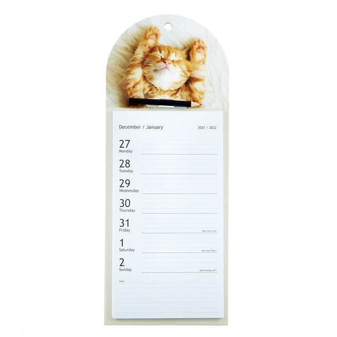 Hanging Tear-Off 2022 Cat Calendar