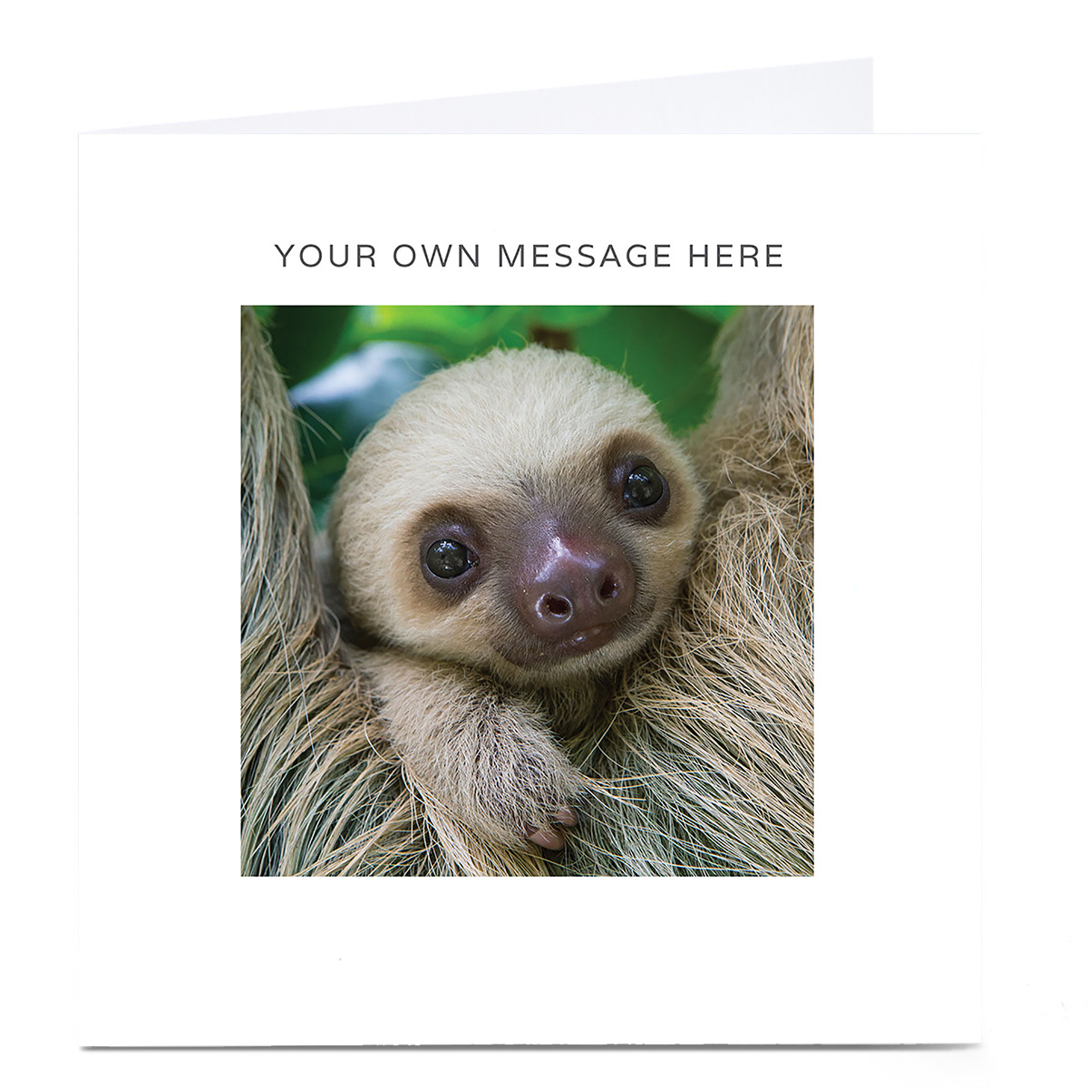Personalised Card - Baby Sloth