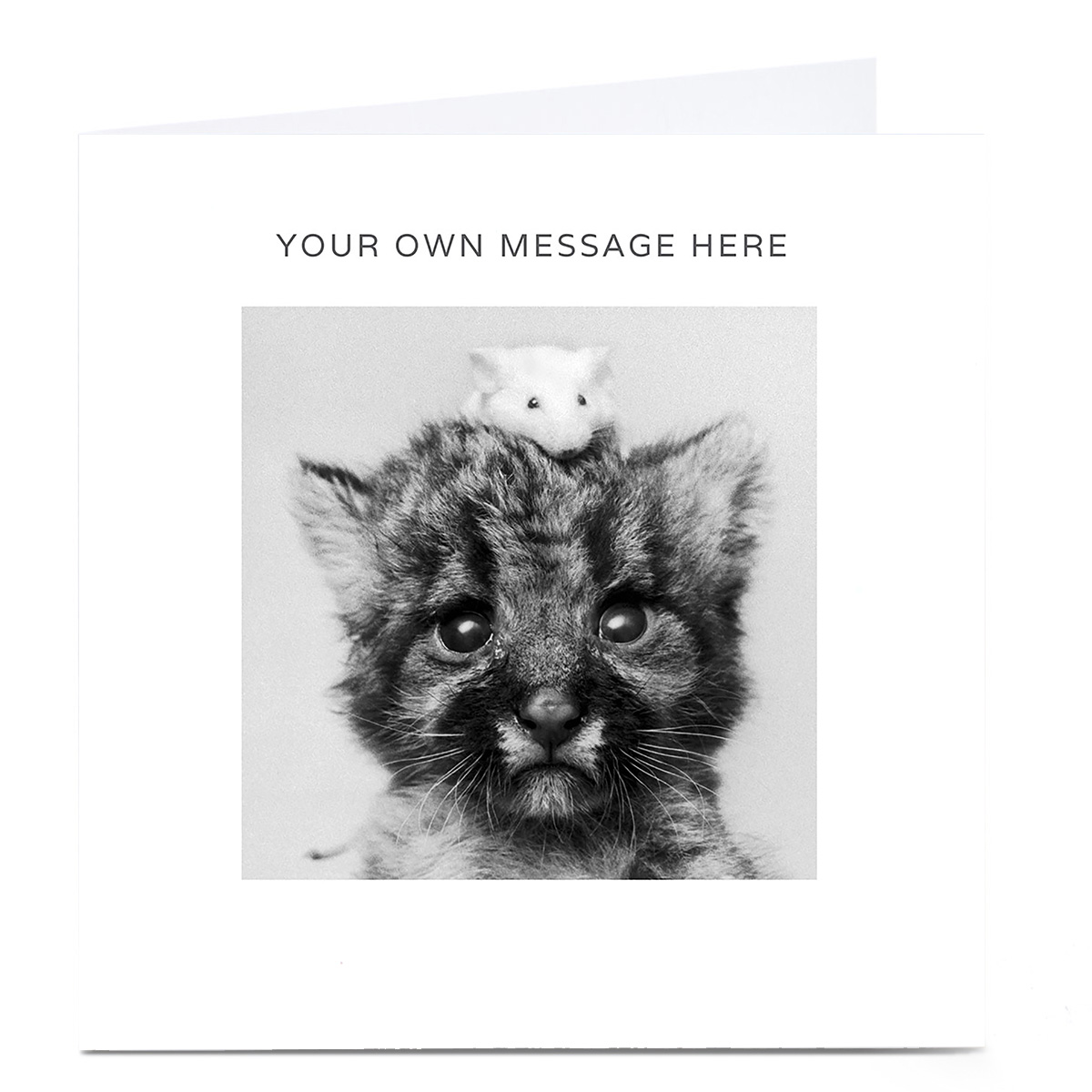 Personalised Card - Cat And Mouse