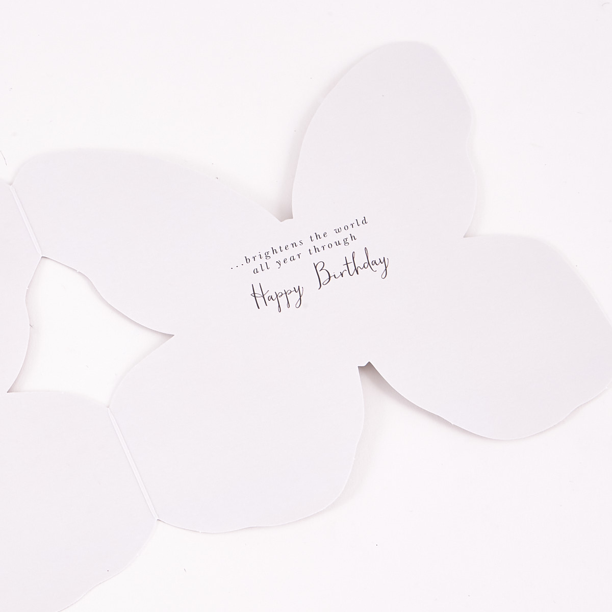 Boutique Collection Birthday Card - Daughter In Law, Butterfly