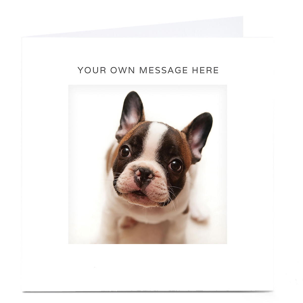 Personalised Card - French Bulldog Puppy