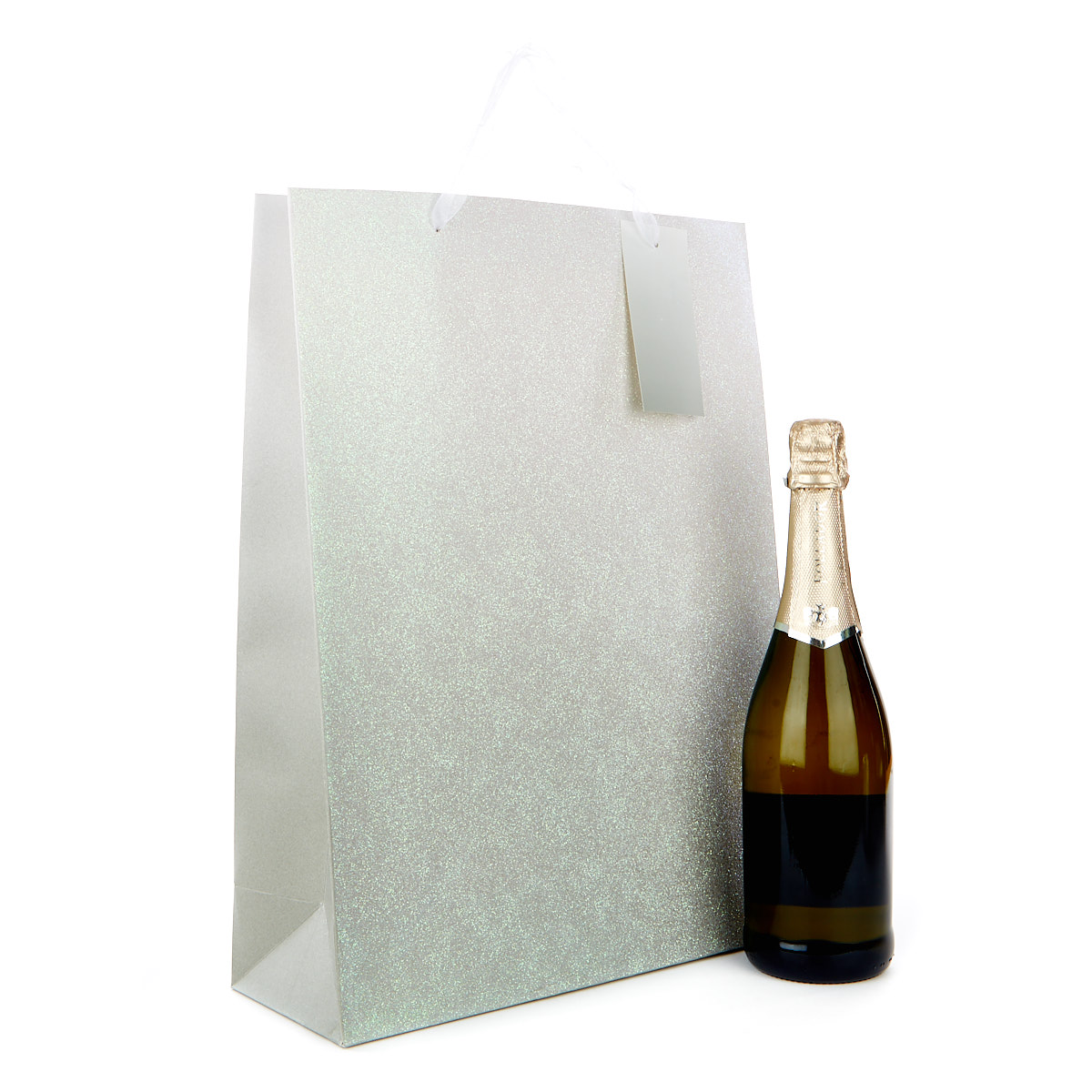 Large Portrait Gift Bag - Silver Glitter Ombre