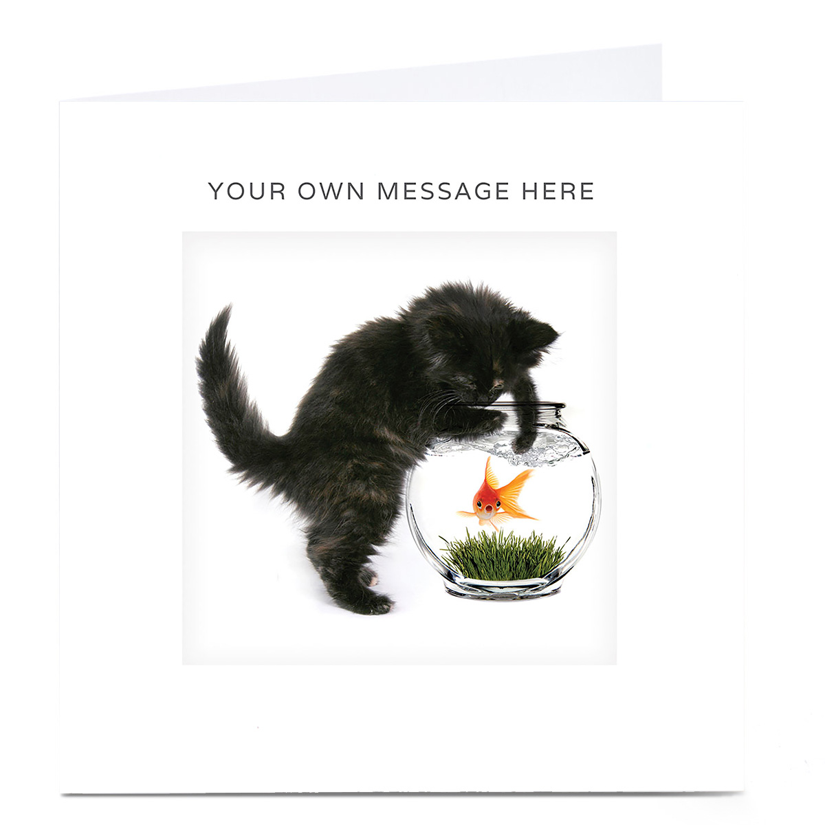 Personalised Card - Cat And Goldfish